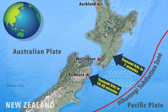 hikurangi-subduction-zone