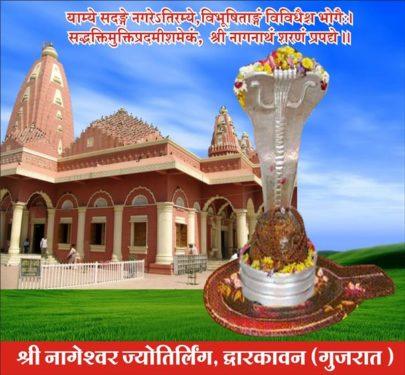 8.Nageshwar Jyotirlinga
