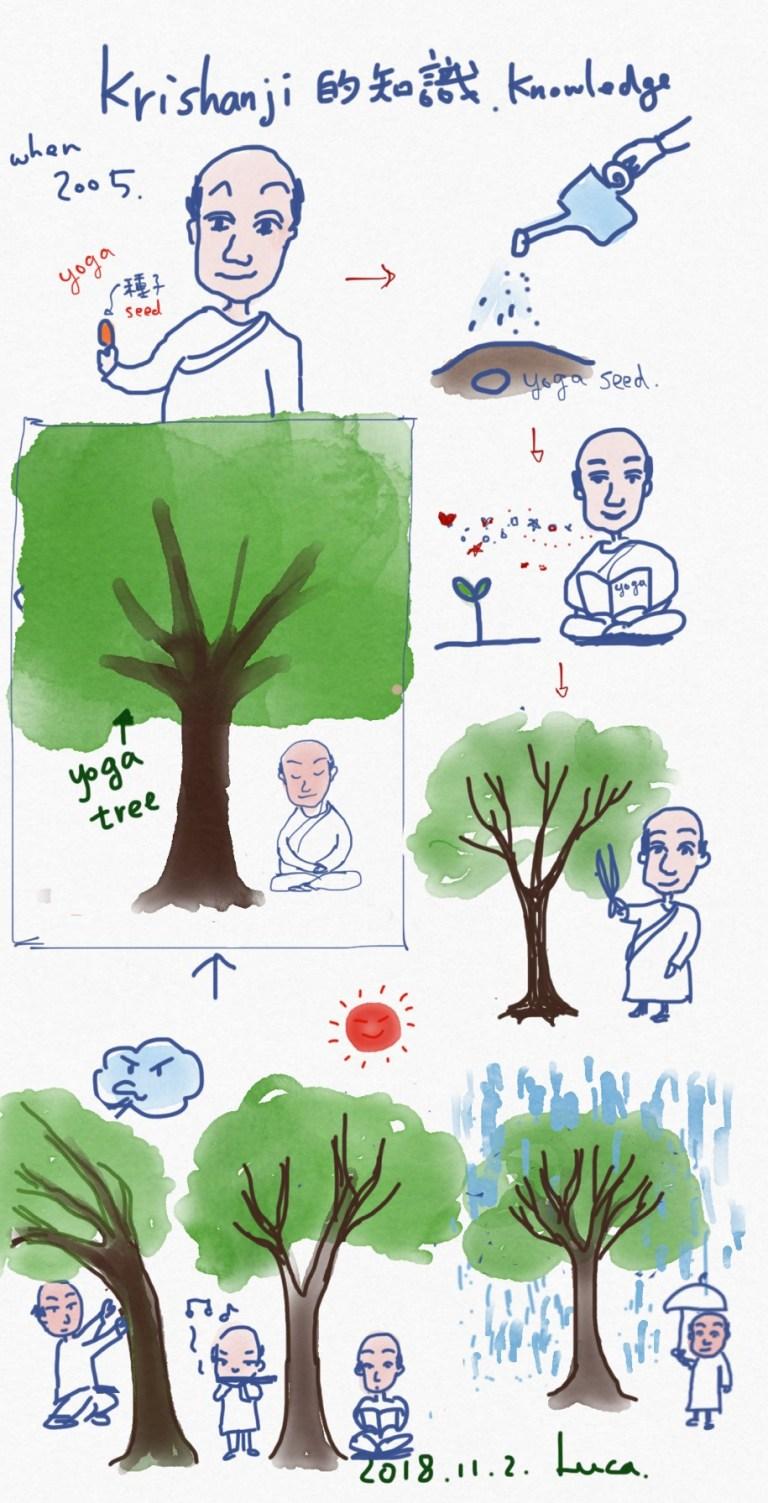 Teresa Tree 2