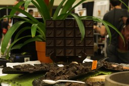 Guittard's chocolate display looked delicious.