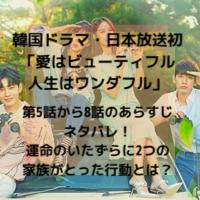 韓国ドラマ・日本放送 愛はビューティフル人生はワンダフル 第4話から8話 あらすじ ネタバレ