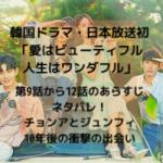 韓国ドラマ・日本放送 愛はビューティフル人生はワンダフル 第9話から12話 あらすじ ネタバレ