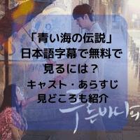 「青い海の伝説」日本語字幕で無料で見るには?キャスト・あらすじや感想