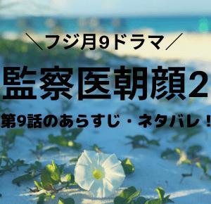 「監察医朝顔2・ドラマ」第9話のあらすじ・ネタバレ!人気モデル殺人事件?朝顔・牛島の涙の理由とは?