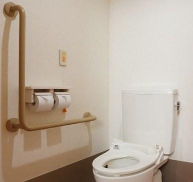 reform-toilet-tesuri
