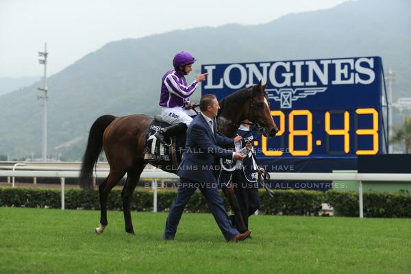 15香港ヴァーズ7