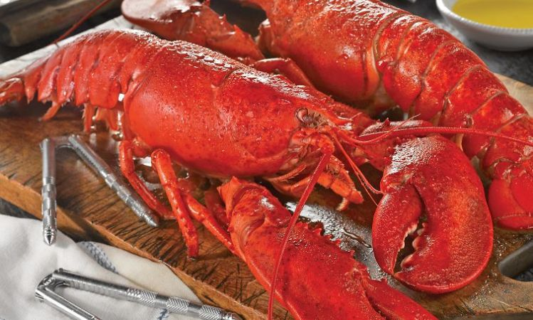 Cedar Heights LobsterFest