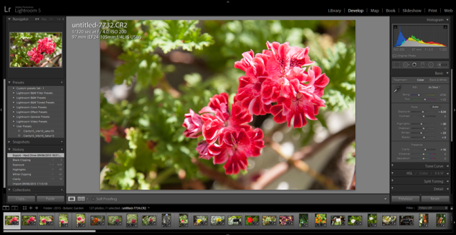 Adobe-Lightroom Develop Module