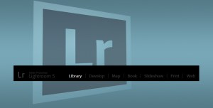 Adobe Lightroom Library Module