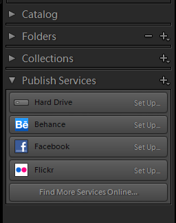 Lightroom Library Navigation Sections
