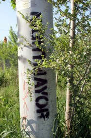 Railpath Pole