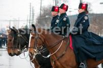Horse Line