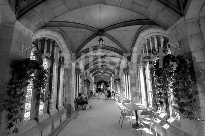 Down the Cloister