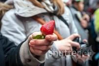 Strawberry Ceremony 05