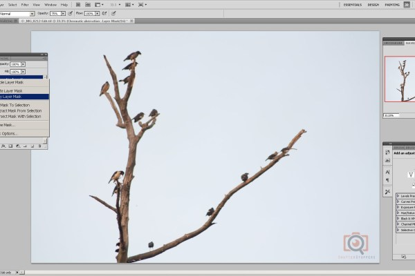 Layer masking in photoshop