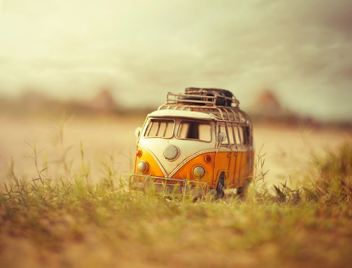 Shot of the day by Ashraful Arefin