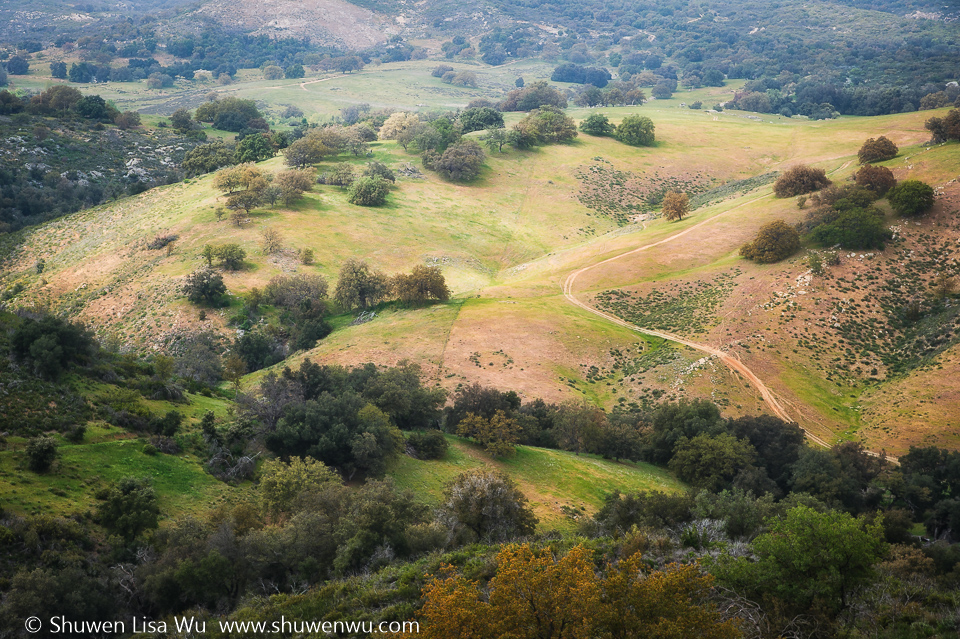 Santa Ysabel Open Space Preserve West