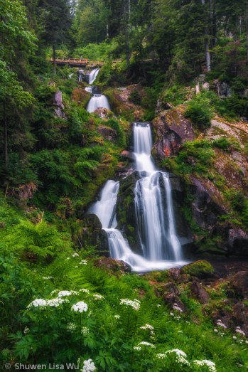 Triberg Waterfall, Black Forest, Germany. June 2014.