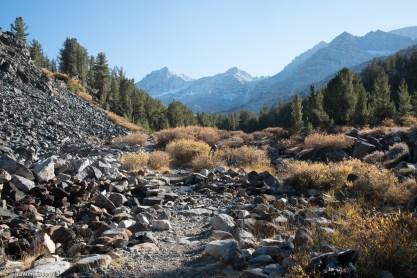 Trail below Long Lake, Little Lakes Valley, CA.