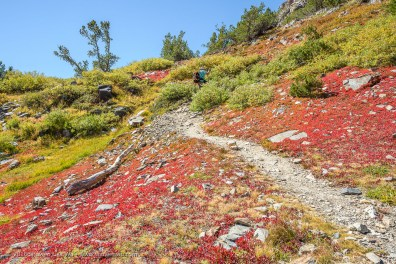 Alex hikes uphill from Lake Helen, 20 Lakes Basin, Hoover Wilderness, California, September 2016.