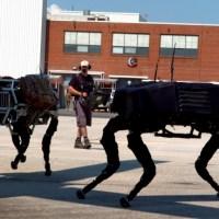 [:en]BigDog Quadruped robot[:ua]Чотириногий робот BigDog[:ru]Четвероногий робот BigDog[:]