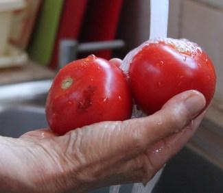 העגבניות מוסיפות צבע