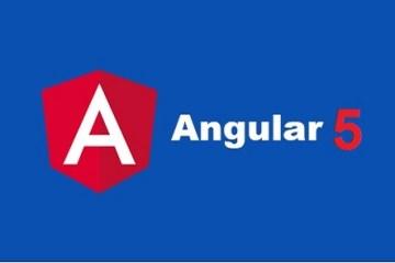 Angular5
