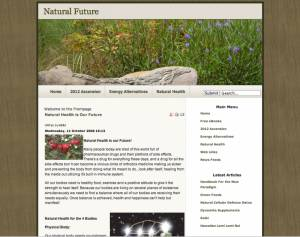 Natural-Future Website 2006
