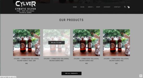 Cylver Website