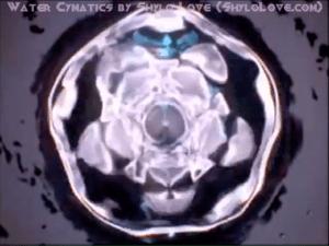 Screen Shot 2014-09-04 At 4.40.11 PM