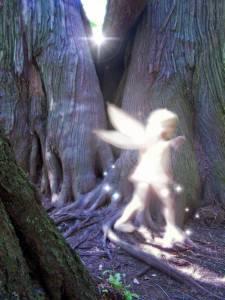 Forestsprite1