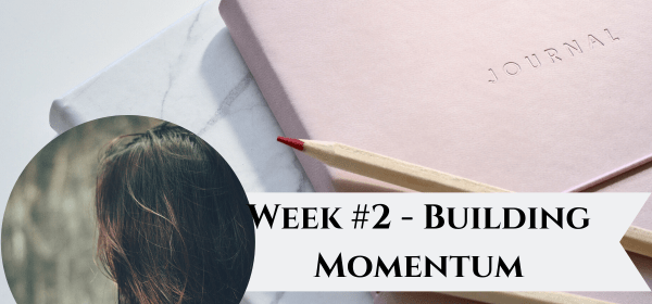 Image showing title of the post - Week #2 Building Momentum