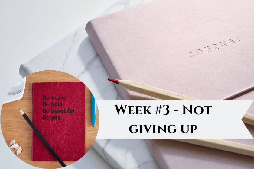 Week #3 - Not giving up