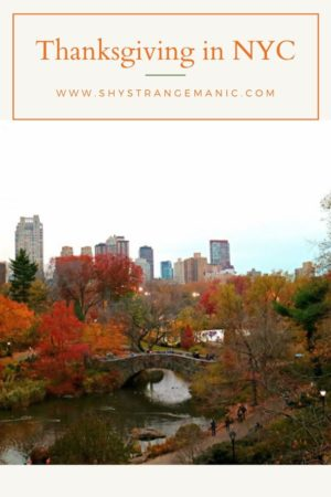 Thanksgiving in NYC Pinterest pin