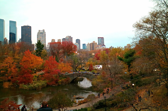 central park in autumn with bridge