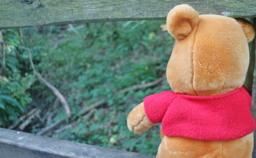 pooh bear teddy bear on pooh stick bridge