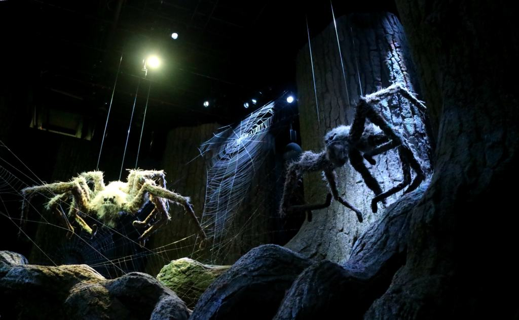Spiders in the Forbidden Forest