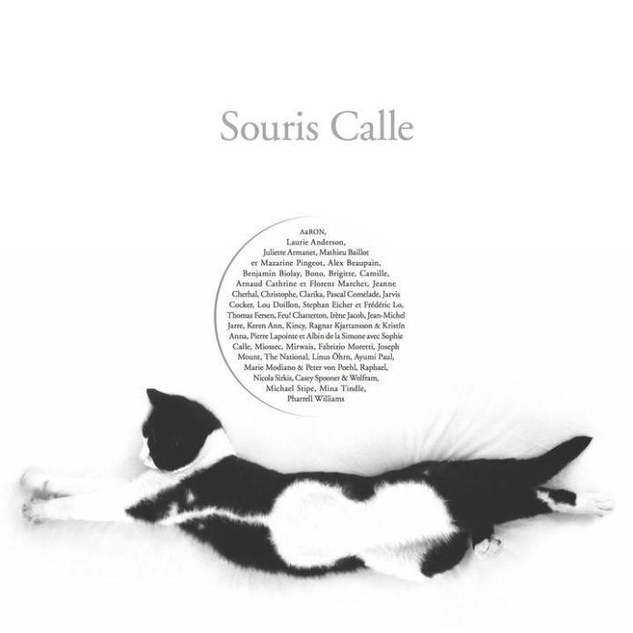 The cover of the album 'Souris Calle'