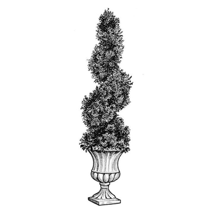 An example of old-school finickiness. The craft of topiary dates to at least ancient Rome.
