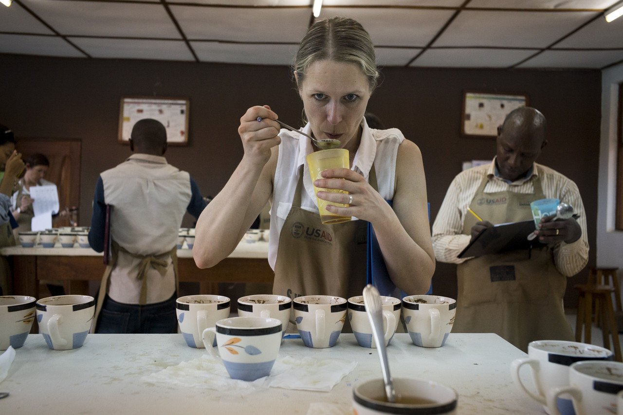 Beth Ann Caspersen judges coffee samples at a competition in Bukavu, Congo, in May. Congo's best coffee beans regularly fetch a premium wholesale price.