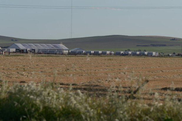 Tesla PowerPacks at the Hornsdale wind farm in September.