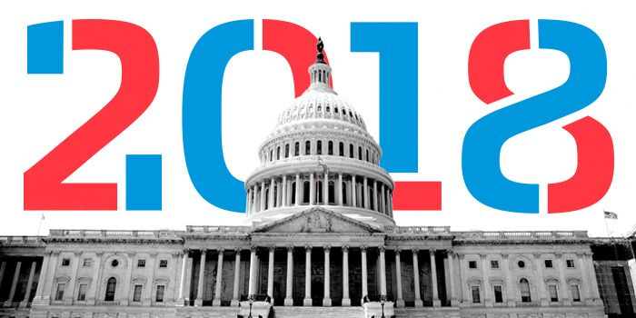 Image result for midterm election 2018