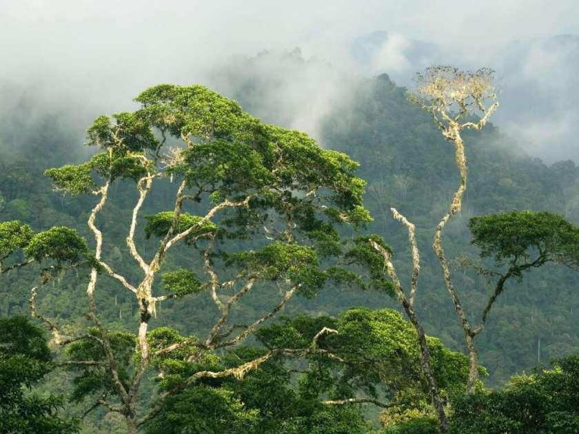 بنما - البلدان الاكثر جمالا في العالم