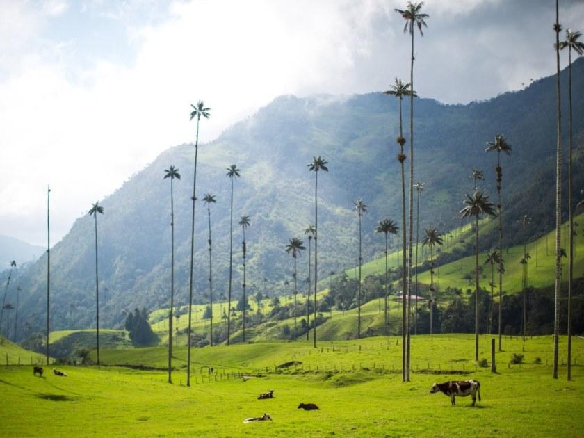 كولومبيا - ضمن ترتيب الدول الاكثر جمالا