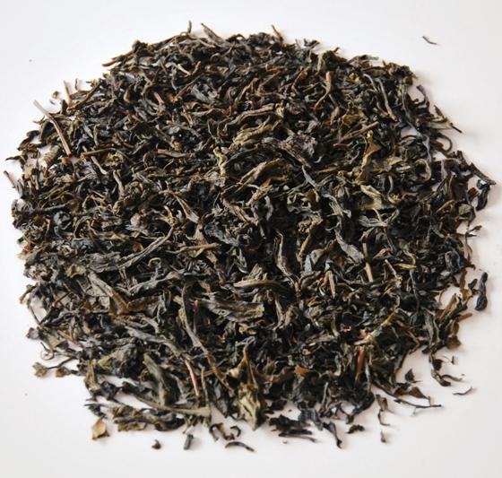 Shan Tee: Assamica-Tee-Baum, Wildwuchs, Nordthailand, Pu Er-Stil