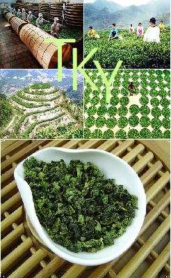 Tie Guan Yin Oolong Tee, Anxi, Fujian, China: Produktbild