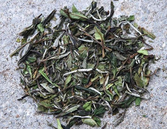 white peony (bai mu dan, pai mu tan) - 1+2 picking standard with characteristic pastel coloration of leaves