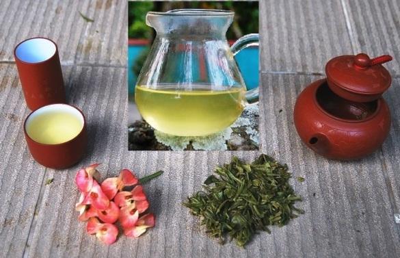 Exploration Wilder Spring Long Jing Grüner Tee