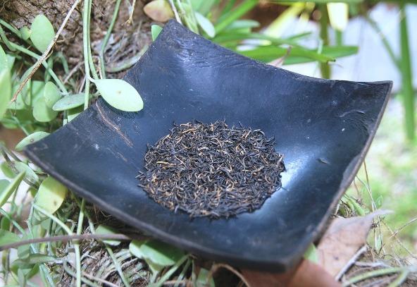 Lapsang Qingming Jin Jun Mei Golden Eyebrows Schwarzer Tee in meinem Garten 3