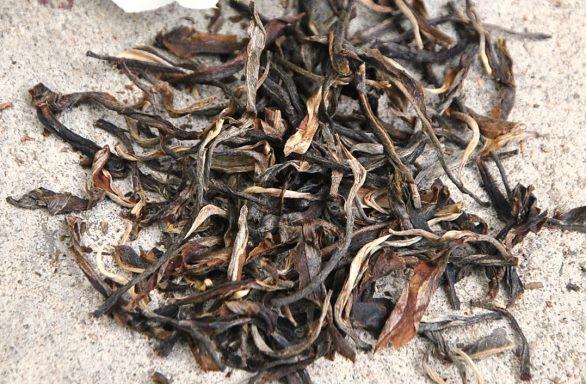 Da Hong Pao Oolong Tee - trockenes Blattvmaterial